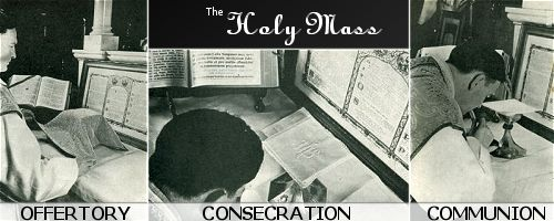 The Mass consists of three important and necessary parts, the Offertory, Consecration and Communion.